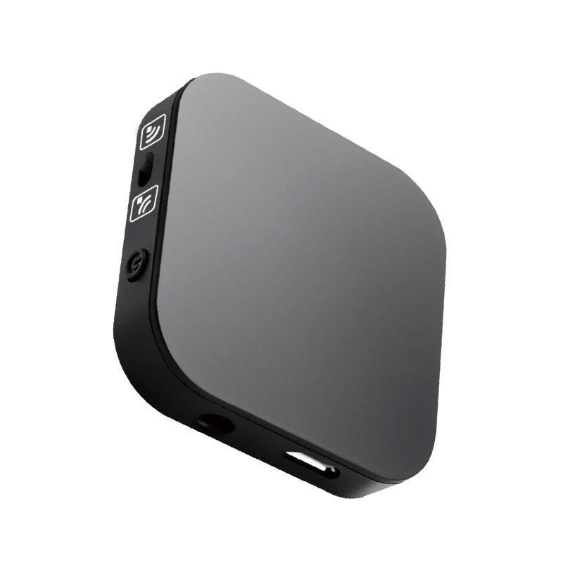 極の音域 Wireless Audio Adapter 受信機
